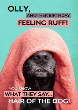 Greeting Cards - Birthday Card - Photo Humour - Animal Antics - Hair Of The Dog - Image 1
