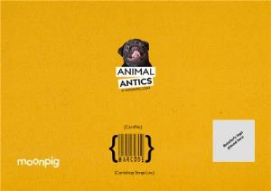 Greeting Cards - Birthday Card - Photo Humour - Animal Antics - 60th Birthday - Image 4