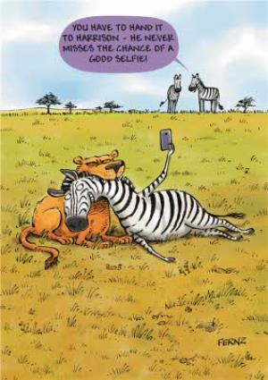 Greeting Cards - Cartoon Safari Doesn't Miss A Selfie Funny Card - Image 1