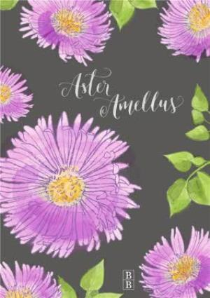 Greeting Cards - Bright Purple Aster Flower Personalised Card - Image 1