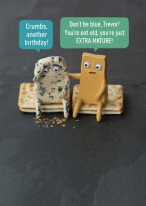 Greeting Cards - Cheese Pun Birthday Card - Image 1