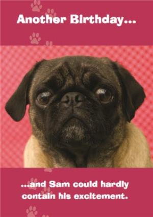 Greeting Cards - Another Birthday Excited Pug Personalised Birthday Card - Image 1