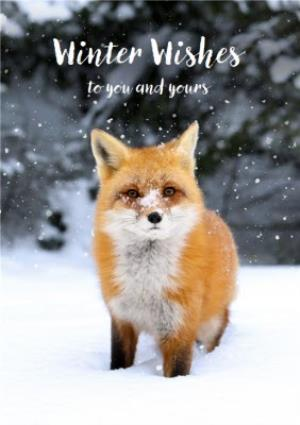 Greeting Cards - Christmas Card - Winter Wishes - Snow - Fox - To You And Yours - Image 1