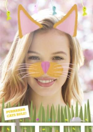 Greeting Cards - Charming Cat Face Upload Card - Image 1
