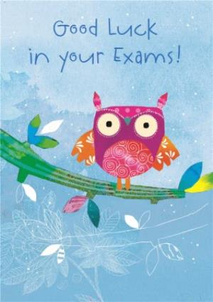 Greeting Cards - Colourful Owl Personalised Good Luck In Your Exams Card - Image 1