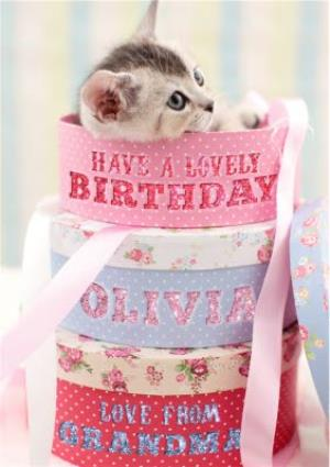 Greeting Cards - Adorable Kitten In A Hat Box Personalised Birthday Card - Image 1