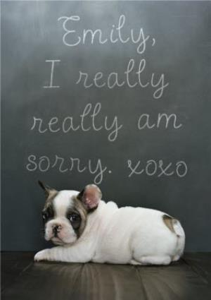 Greeting Cards - Puppy French Bulldog And Chalkboard Personalised I'm Sorry Card - Image 1