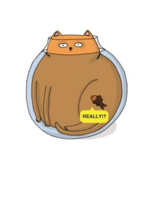Greeting Cards - Cat In A Fishbowl Funny Personalised Greetings Card - Image 1