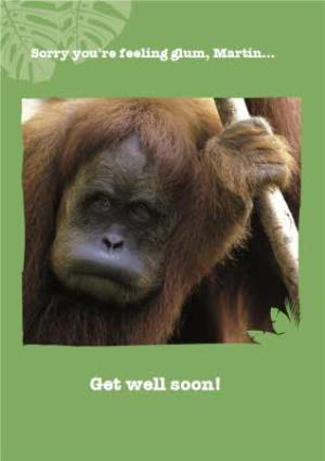 Greeting Cards - Orangutan Sorry You're Feeling Glum Personalised Get Well Soon Card - Image 1