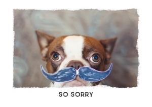 Greeting Cards - Boston Terrier With Moustache Personalised Sympathy Card - Image 1