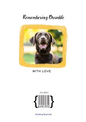 Greeting Cards - Pet Memorial Personalised Photo Upload Card In Loving Memory Card - Image 4