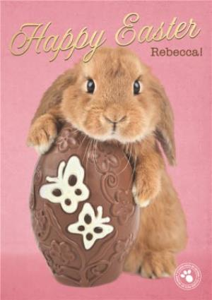 Greeting Cards - Adorable Bunny Hugging Chocolate Egg Easter Card - Image 1