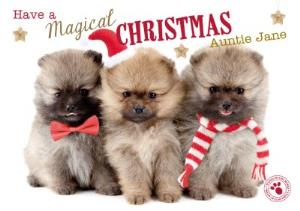 Greeting Cards - Cute Puppies Magical Christmas Personalised Merry Christmas Card - Image 1