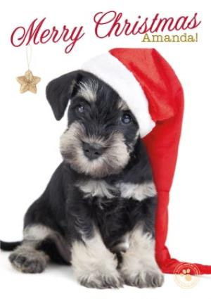 Greeting Cards - Little Puppy With Santa Hat Personalised Merry Christmas Card - Image 1