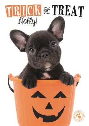 Greeting Cards - Cute Puppy Trick Or Treat Personalised Halloween Card - Image 1