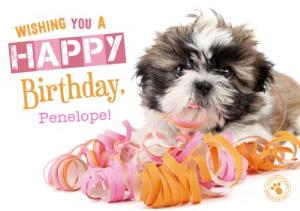Puppy In Ribbon Personalised Name Happy Birthday Card