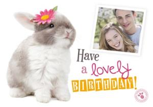 Greeting Cards - Adorable Bunny Happy Birthday Photo Upload Card - Image 1