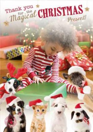 Greeting Cards - Cute Pets In Santa Hats Photo Upload Christmas Card - Image 1