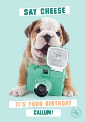 Greeting Cards - Cute Bulldog  holding vintage camera - Personalised Birthday Card - Image 1