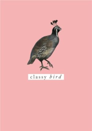 Greeting Cards - Bright Peach Classy Bird Card - Image 1