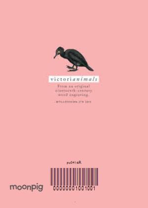 Greeting Cards - Bright Peach Classy Bird Card - Image 4